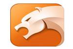 睿虎黔西南布依族苗族自治州手机网站开发-猎豹安全浏览器